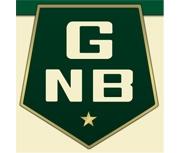 Greenville National Bank logo
