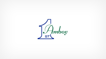 The First National Bank In Amboy logo