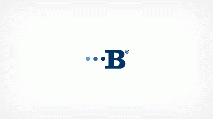 Bridgeview Bank Group logo