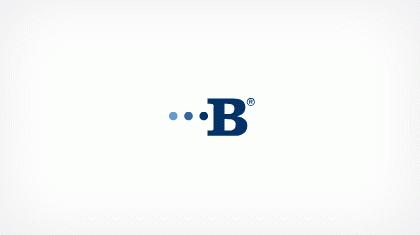 Bridgeview Bank Group logo