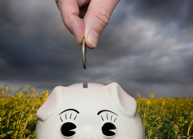 CD Vs. Savings Account: Which Is The Better Option For You?