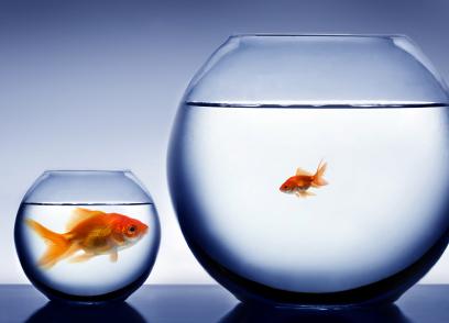 big banks vs small banks image