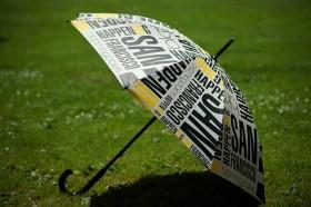 Umbrella on grass