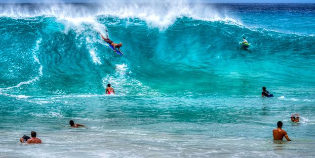 I want to enjoy my Hawaiian getaway with my dog. Let's see if concierge can make it happen. Photo: Flickr | https://www.flickr.com/photos/88533186@N07/11824769035/in/photolist-j1V2Sc-9iXcKE-9nev3M-9o12t1-fTcuQ9-9jWbr9-a9KvaK-e22nL8-9x4Lwg-9vSiGQ-9wXwzP-9kamGn-8uhJxM-9kWrKd-92W8x8-9nD7kT-9nG8RA-kgvYtB-bBTmvt-bNzjgD-8uhrpB-7ujYQv-uF3o9-f1He9f-7s5HxZ-9rxnhb-a9KvhM-g1aRnn-oKzHEt-2fBjVB-7wFU8q-ANFVi-4HWWRi-Y9Zrn-9rJq3Z-a7mhX3-qbhM9R-99iWsp-c1MX4J-7eTJae-cuqjkh-a9Ni1q-ff1kqk-j1YSYG-8kPLqs-9th5Ut-8rPAPZ-27Pxgt-f38zJa-cwCdJW