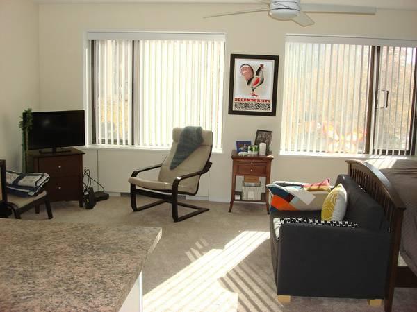 Minneapolis studio apartment living room