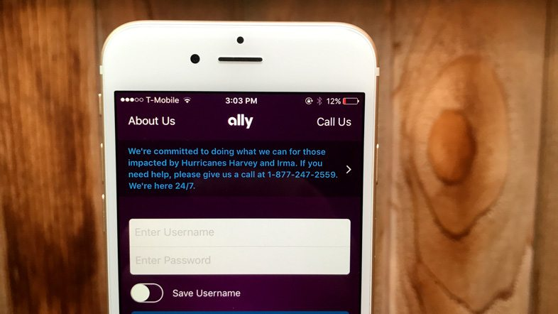 Ally Interest Checking Account Review